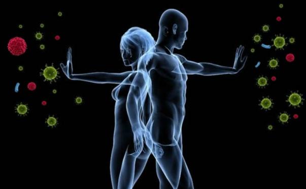 Иммунная система. Что нужно делать чтобы укрепить её?