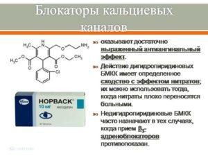 blokator-1
