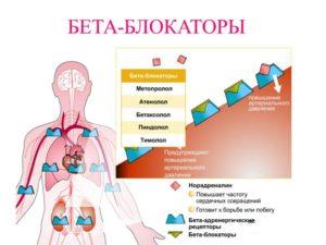 blokatory-beta-adrenoreceptorov