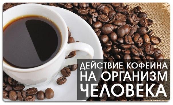 Кофеин: действие на организм, мифы и факты