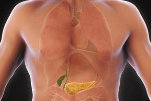 Желчный пузырь. Описание, диагностика и лечение