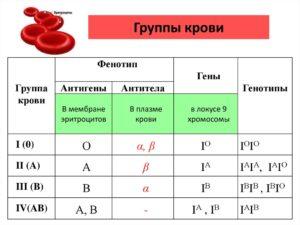 kakie-analizy-nuzhno-sdat-pri-planirovanii-beremennosti