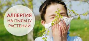 Аллергия на пыльцу. Что это такое и как её лечить?