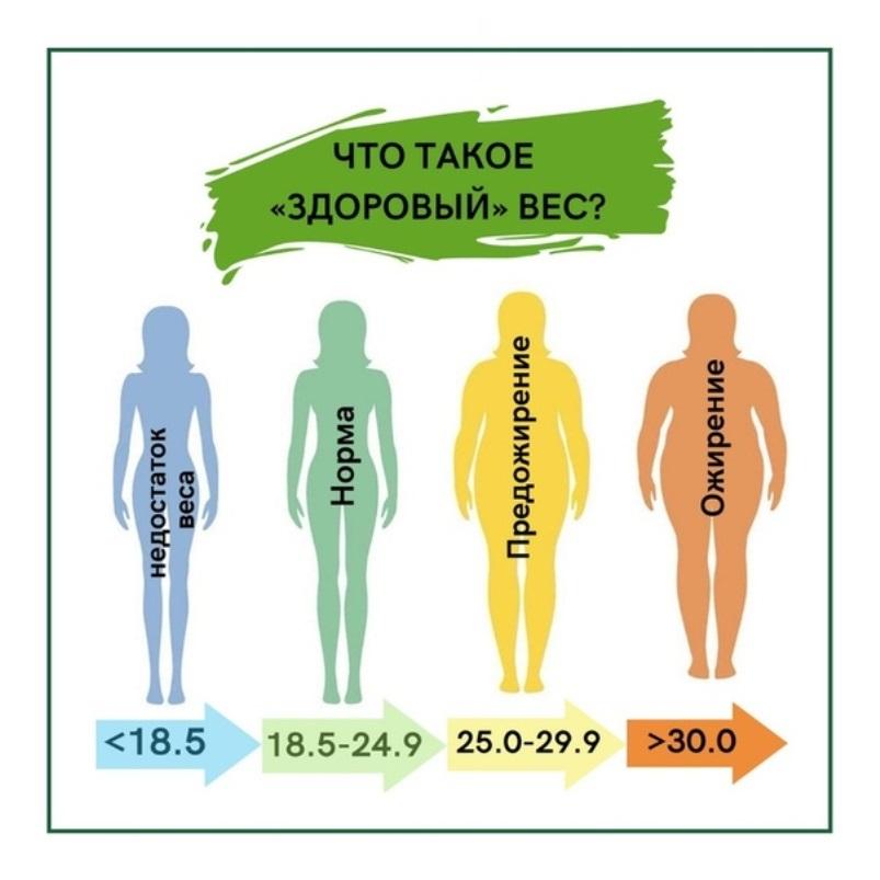 Здоровый вес. Какой у вас индекс массы тела?