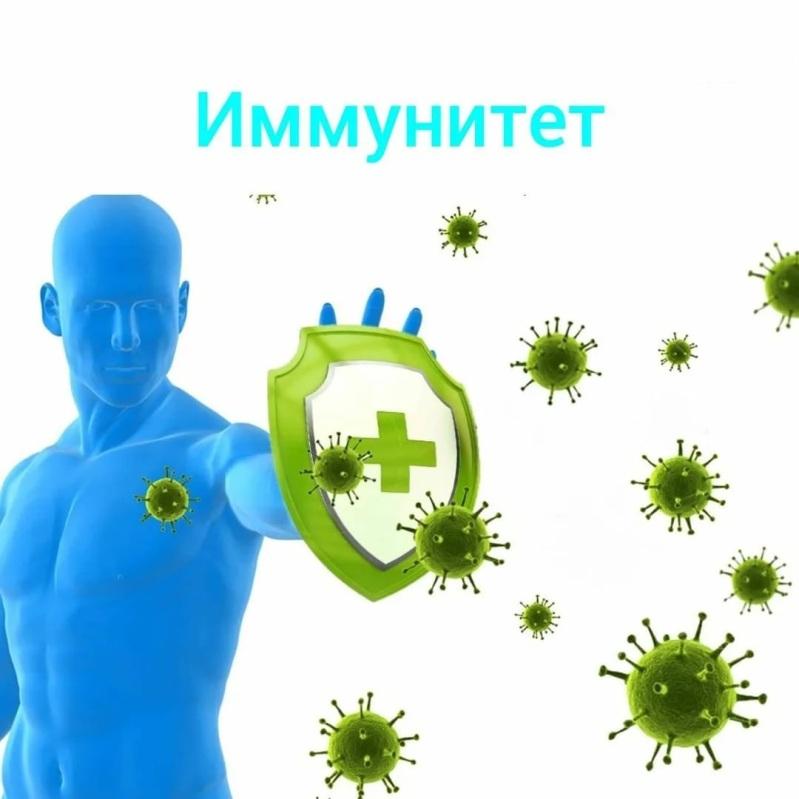 Иммунная система. Как много вы о ней знаете?